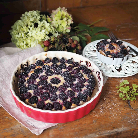 Ricottový koláč s ostružinami